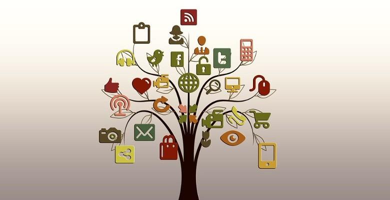 Quand les compétences en social marketing deviennent une porte d'entrée dans les PME